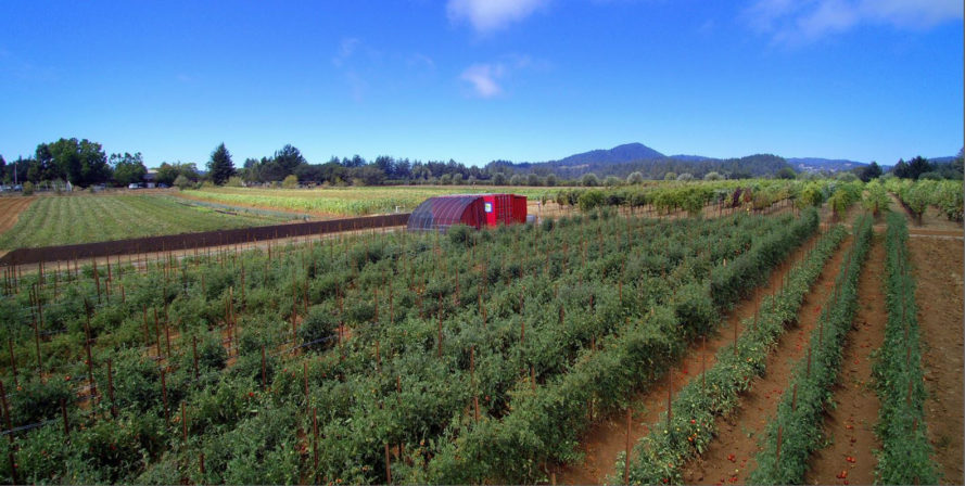farm from a box, california, drought, san francisco, shone farm, santa rose junior college, two acre farm, farming kit, easy farm kit, growing food, sustainable food, off-grid farming, community farming