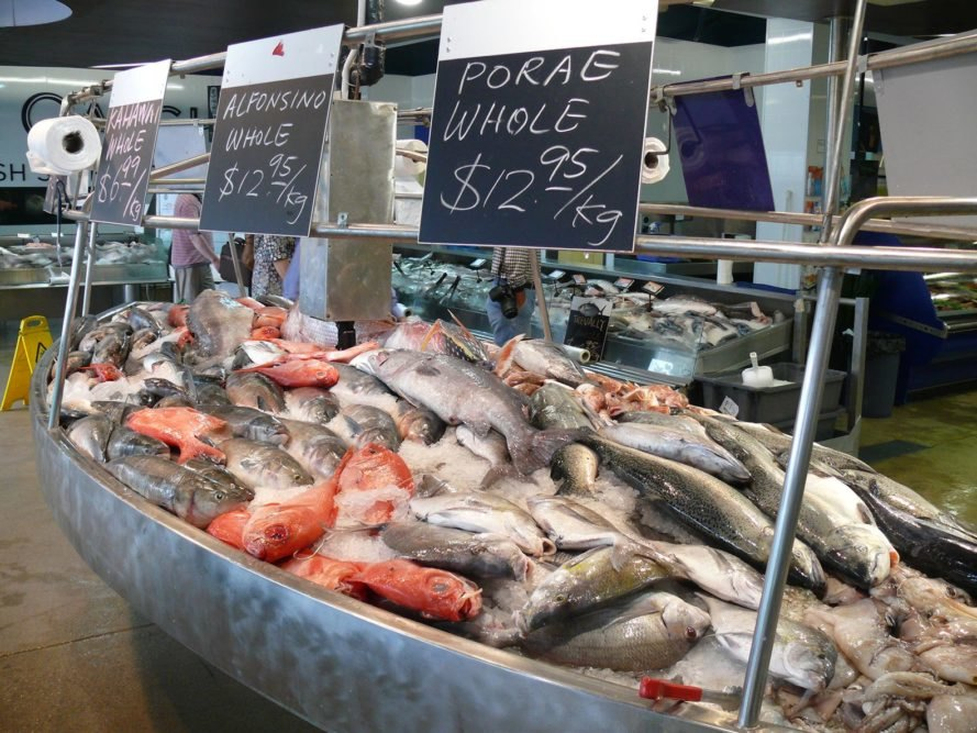 Fish, fishing, fisheries, fish caught, Global Atlas of Marine Fisheries, Daniel Pauly, Food and Agriculture Organization of the United Nations, Food and Agriculture Organization, fish management, climate change, global warming, ocean, oceans, sea, seas