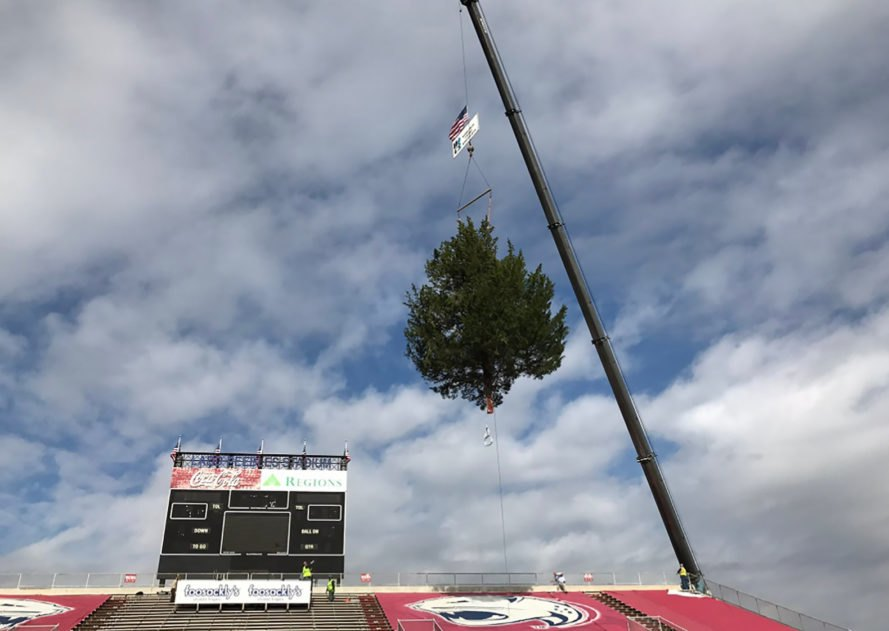 Donald Trump, Trump, President-elect, thank you tour, Trump tour, Mobile, Alabama, Mobile Alabama, tree, trees, cedar, cedars, stadium, Christmas tree, Christmas trees, holiday, holiday decorations