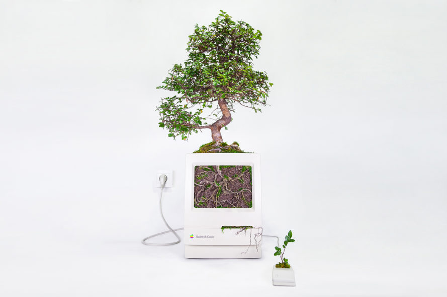 Monsieur Plant, Christophe Guinet, Plant your Mac!, Plant your Mac! by Monsier Plant, plant, plants, garden, gardens, greenery, technology, tech, nature, Apple, Mac, Macintosh, computer, computers, device, devices
