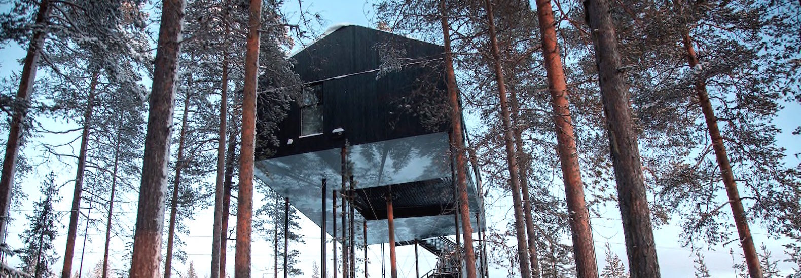 Sn hetta s luxury cabin with aurora borealis views opens for Treehouse cabins aurora ny