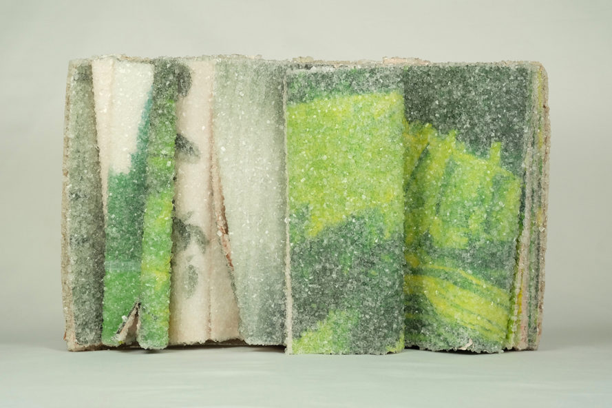 Crystallized Books by Alexis Arnold, borax in sculpture, book sculpture, book art works, crystallized books, recycled book art, crystallized novels