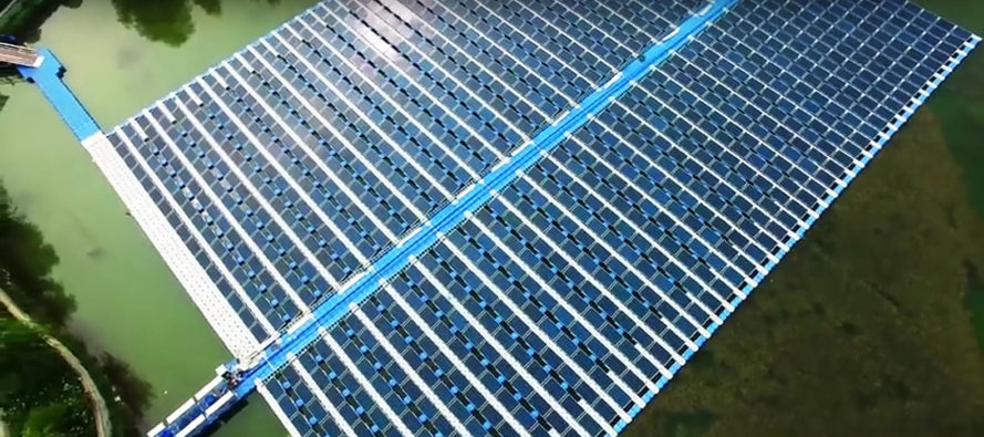 Solar, solar power, solar energy, solar panel, solar panels, fish, fishing, fishery, fish farm, fisheries, fish farms, China, Cixi City, photovoltaic, photovoltaics, solar array