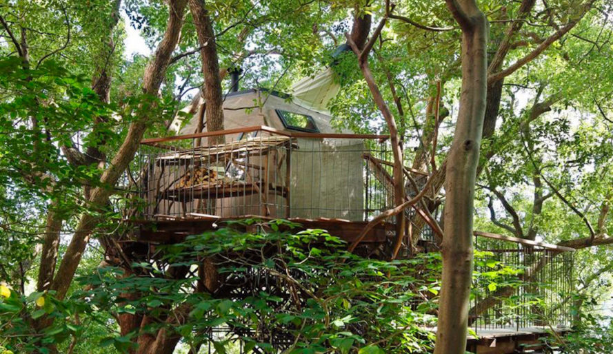 Bird's Nest Atami, Bird's Nest Atami by Hiroshi Nakamura & NAP, Hiroshi Nakamura & NAP, Hiroshi Nakamura, Takashi Kobayashi, tea, teahouse, teahouses, Japan, largest treehouse, nest, nests, crow, crows, freestanding, tree, trees, treehouse, treehouses, living tree, living trees, nature, environment, architecture, design