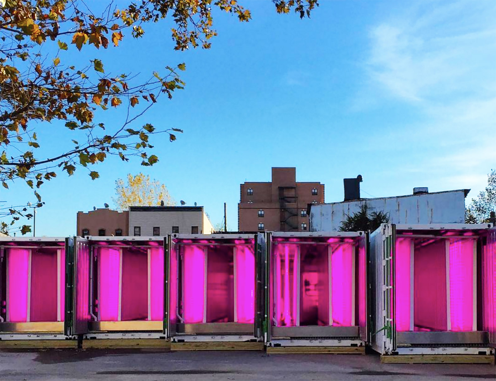 Kimbal Musk launches a revolutionary shipping container farm initiative in Brooklyn
