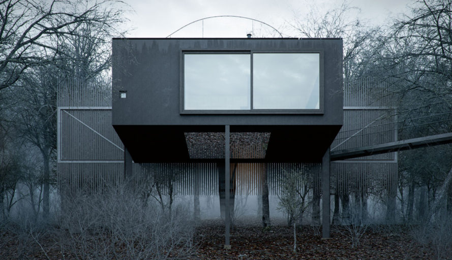 Mask House, WOJR, Ithaca, secluded retreat, New York, house on stilts, green architecture, terrace, floor-to-ceiling windows, wood battens