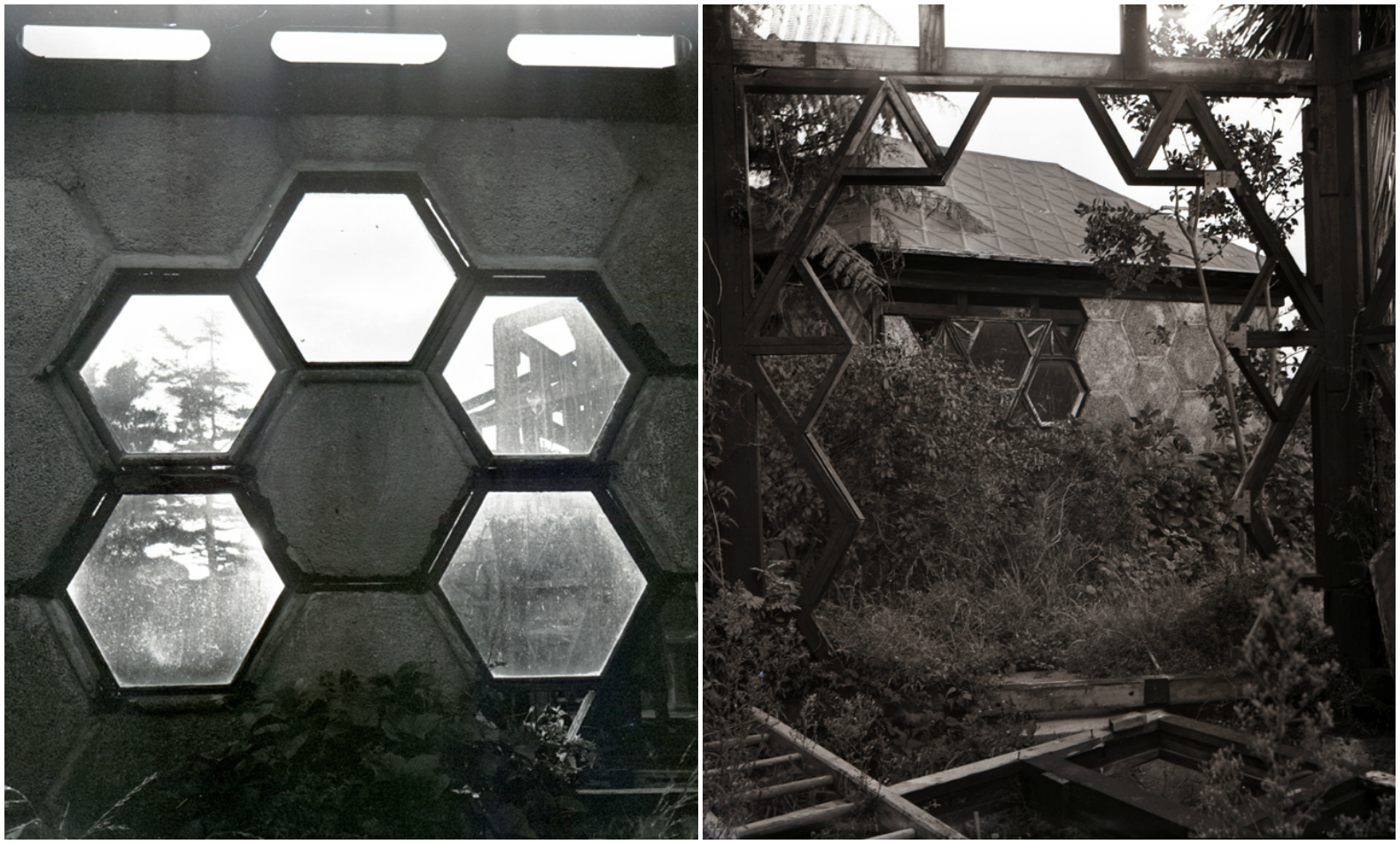 beekeeper built dream hexagonal house without  u0026 39 hateful