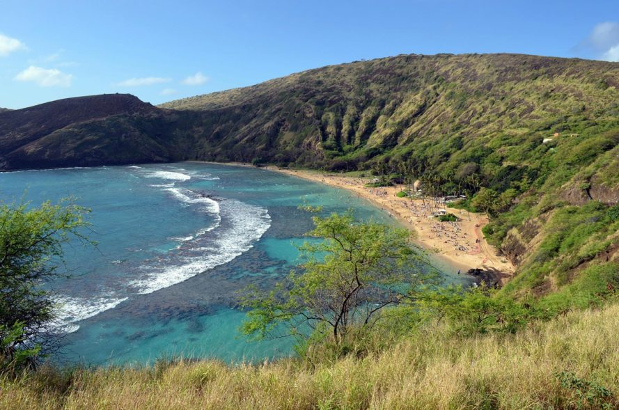 Hawaii, Will Espero, bill, sunscreen, sunscreen ban, sunblock, sunblock ban, oxybenzone, coral, coral reef, coral reefs, coral bleaching, environment, environmental destruction, policy, Hanauma Bay