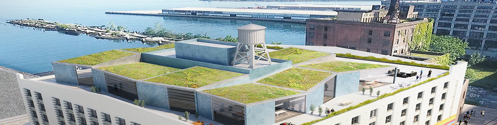 New York City unveils massive green-roofed film and ...