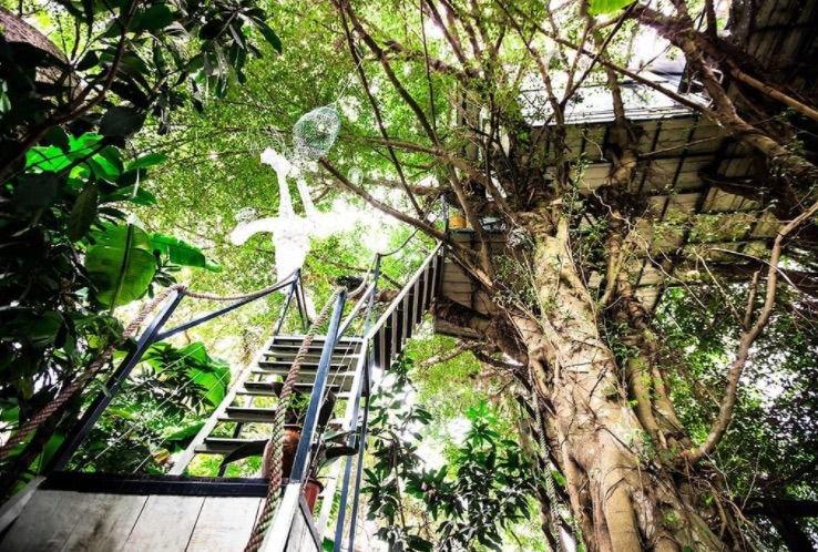 luxury treehouse, treehouse, Vietnamese treehouse, green design