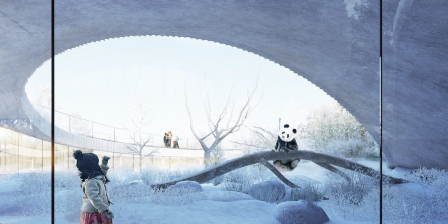 Copenhagen Zoo pandas, Panda House by BIG, Copenhagen Zoo Panda House by BIG, BIG-designed zoo architecture, panda habitat in zoos, circular panda house, yin yang inspired architecture, Copenhagen Zoo architecture
