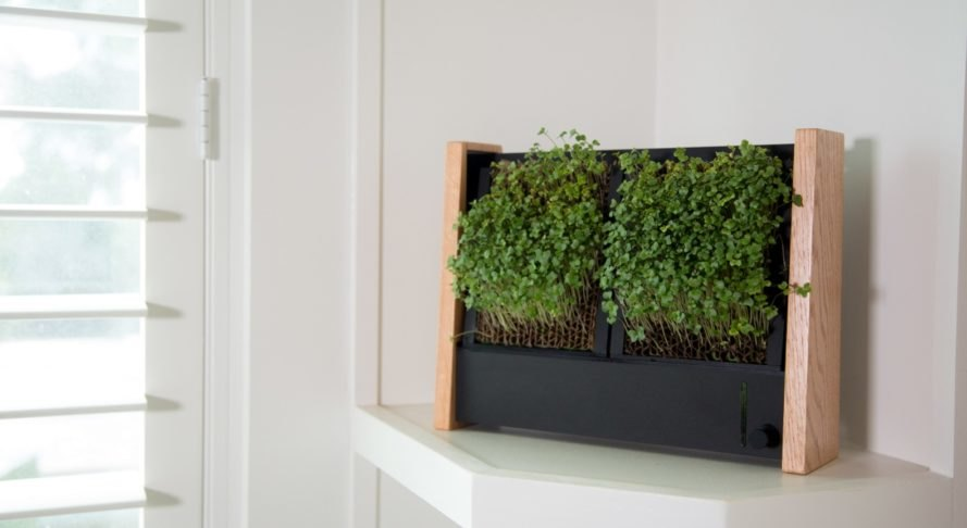 EcoQube Frame, indoor vertical garden, indoor gardening, micro-veggies, microgreens, Aqua Design Innovations (ADI), low-maintenance design, green design, green food