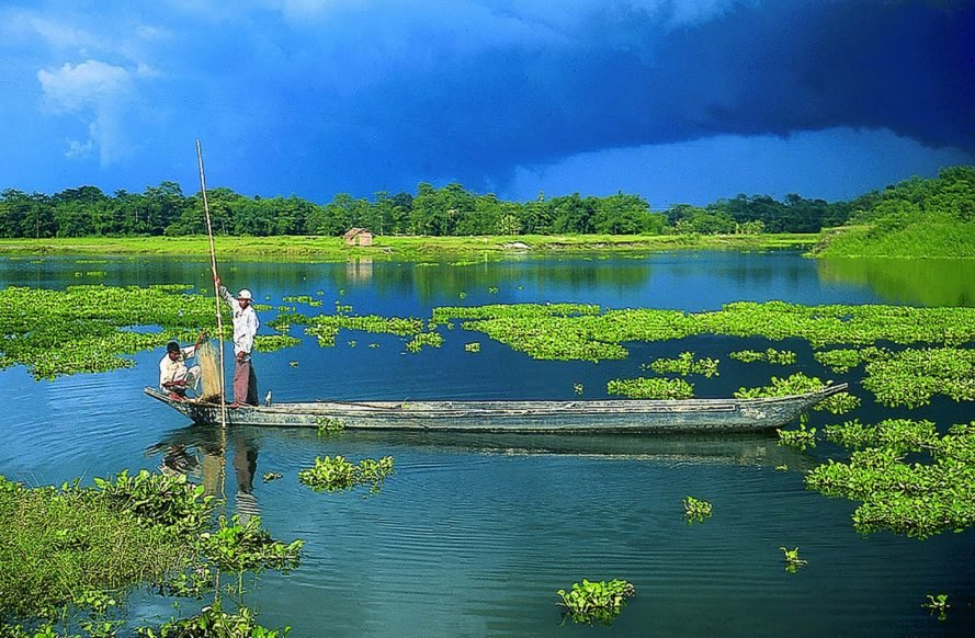 Majuli, Assam, India, river island, island, carbon-neutral, carbon-neutrality, environment, nature, biodiversity, conservation, biodiversity heritage, biodiversity heritage site