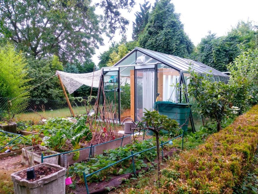 Myfood, greenhouse, greenhouses, aquaponic, aquaponics, solar, solar power, solar energy, solar panels, smart greenhouse, smart greenhouses, technology, app, gardening, plants, vegetable, vegetables, cucumbers, tomatoes, fruit, local food, locally grown food, backyard, family, city
