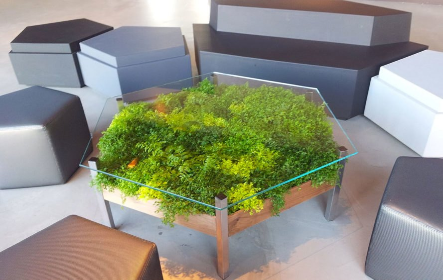 Habitat Horticulture, Hex Table, Hexagon Table, Living Table, The Living Table, Planter Table, Table Planter, Table with plants under glass, terrarium table, terrarium glass table, living furniture, green design, green interiors, interior design, interior landscape design, interior gardening, indoor gardening