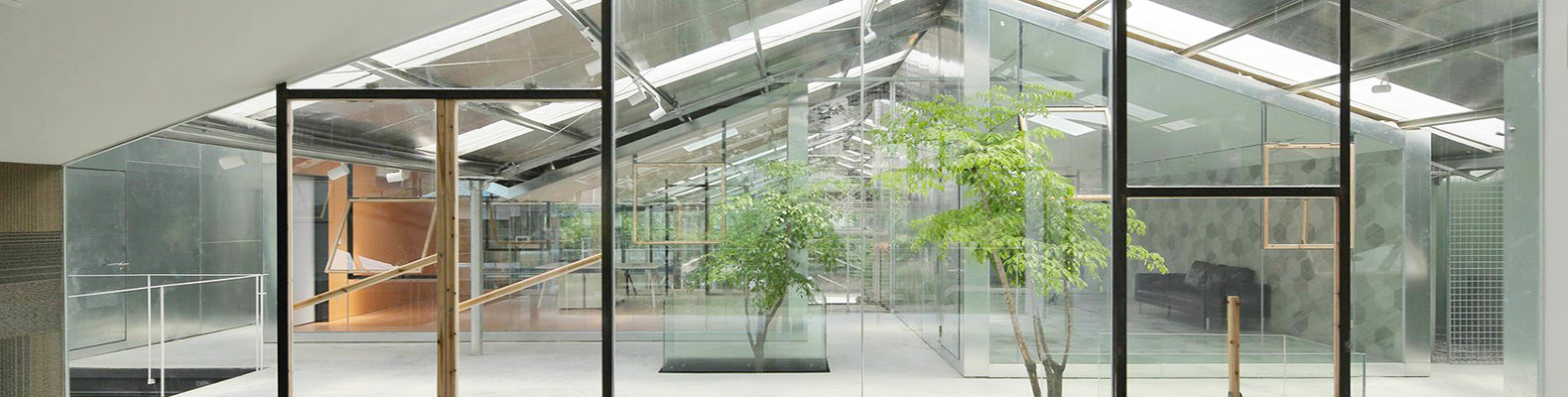 Abandoned greenhouse transformed into gorgeous glass office filled with trees