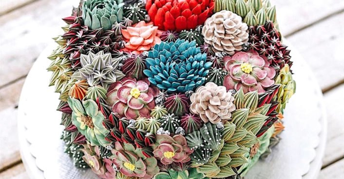 These incredibly lifelike succulent cakes will blow your mind