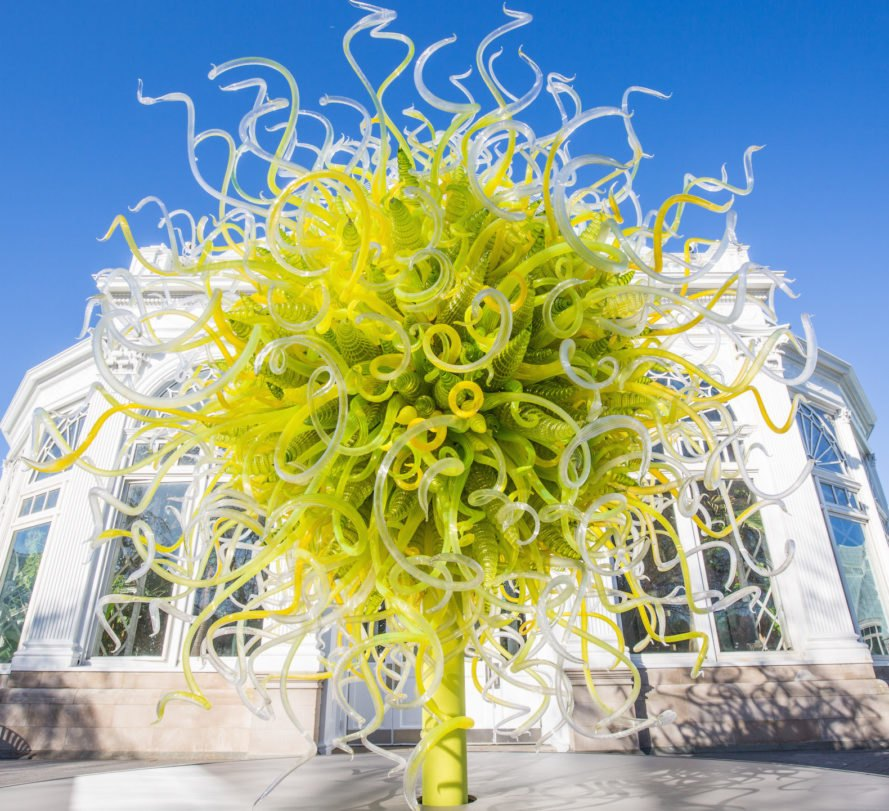 See Chihuly's Dazzling Glass Art Take Over The New York