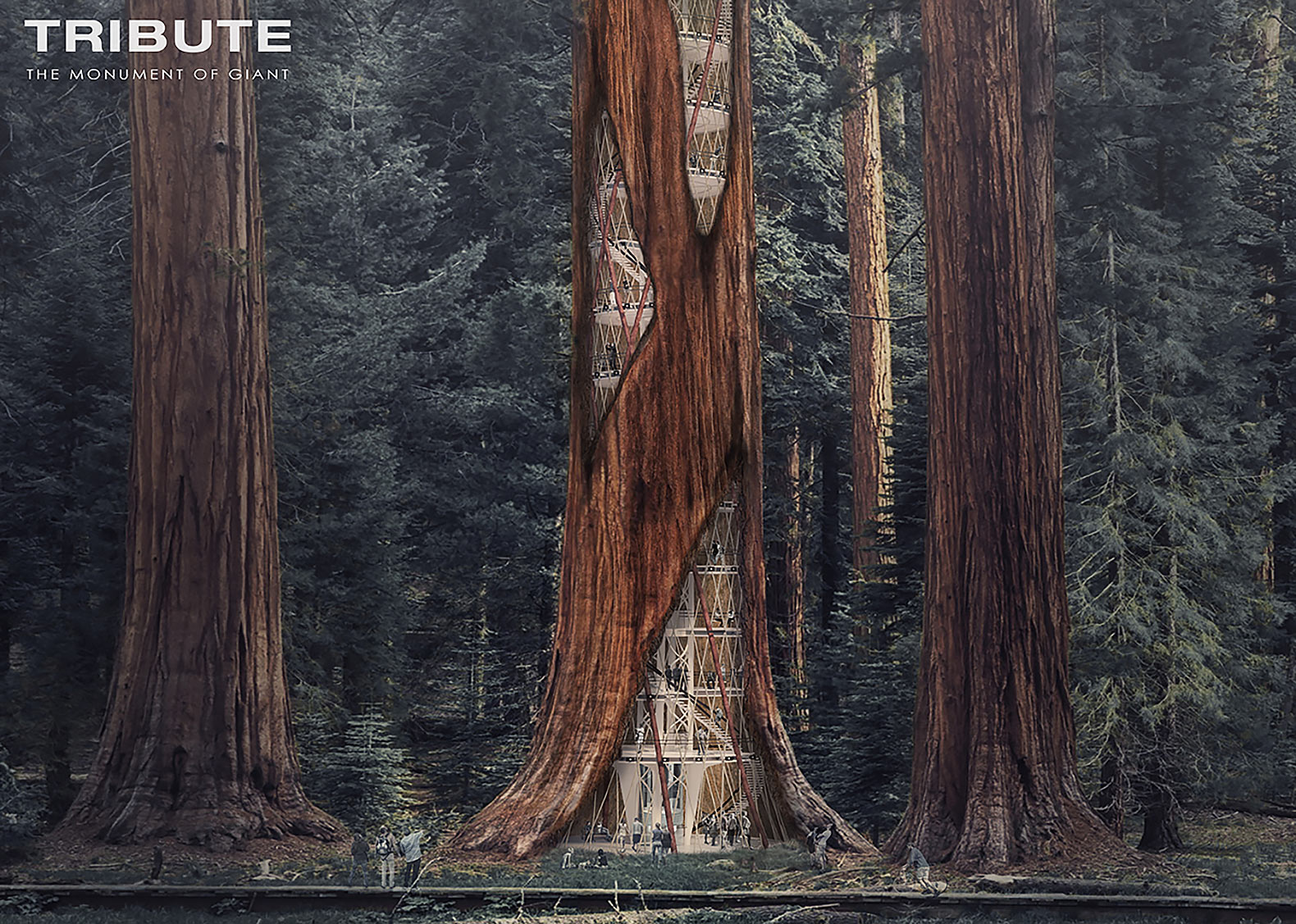 Giant sequoia skyscrapers designed to keep rotted trees standing
