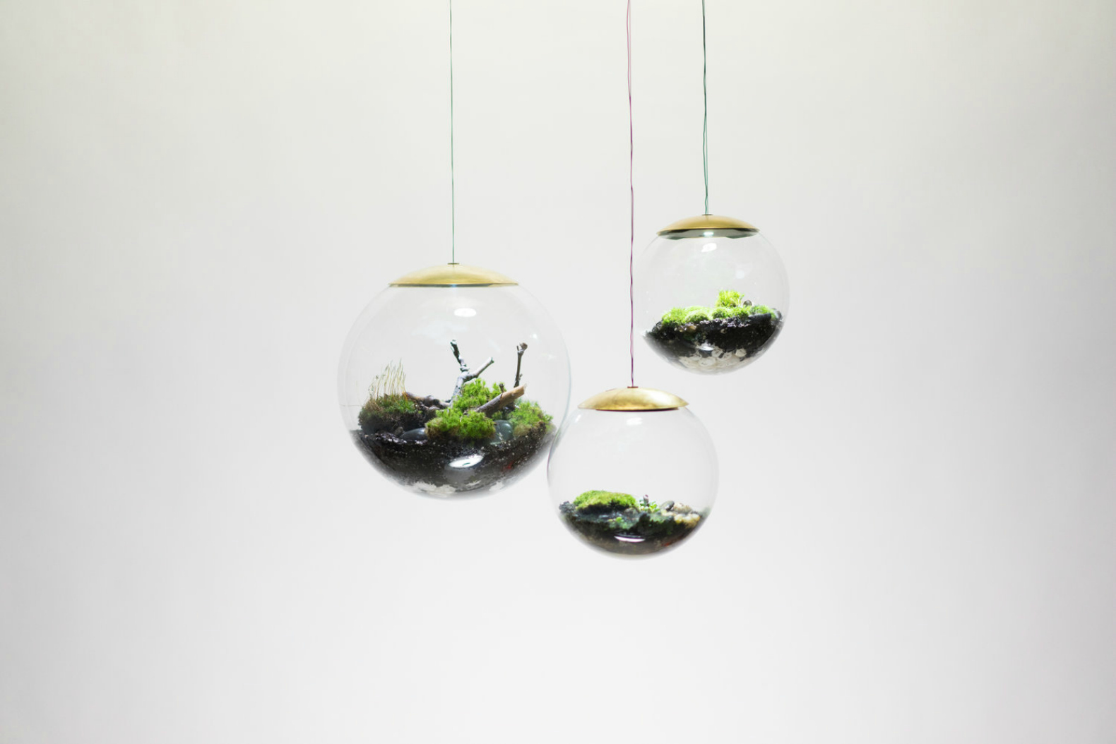 These amazing terrarium lamps grow plants in even the