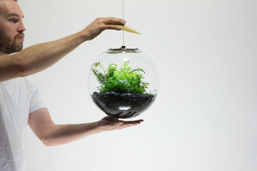 Globe Terrarium, LED lights, terrarium globes, home terrariums, hanging terrariums, terrarium led lights, home gardens, hanging gardens, garden terrariums, interior design, globe gardens, home gardens, hanging garden pots, hanging terrariums, led lighting, led-lit terrarium