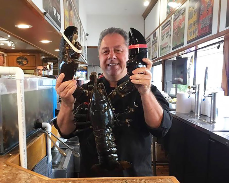 Louie, Louie the Lobster, Peter's Clam Bar, Long Island, Hempstead, New York, lobster, lobsters, crustacean, crustaceans, seafood, ocean, pardon, animals, animal