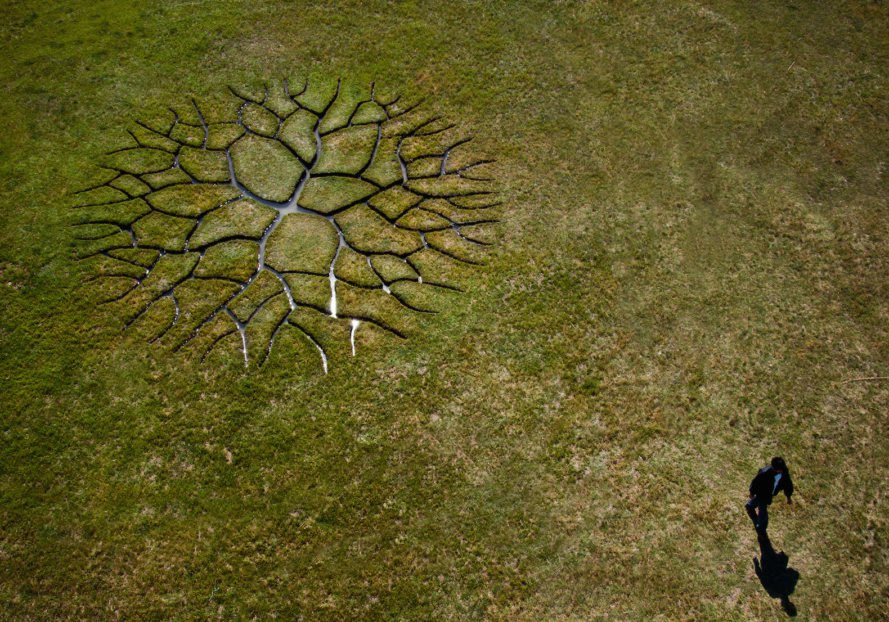 World Tree by Krisztián Balogh, World Tree land art, Krisztián Balogh art, Krisztián Balogh land art, peat bog art, peat art,
