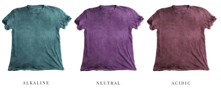 The Unseen, The Lost Explorer, natural dyes, climate change, acid rain, ocean acidification, eco-friendly T-shirts, sustainable T-shirts, color-changing clothing, color-changing clothes, color-changing garments, red cabbage, cabbage, anthocyanins