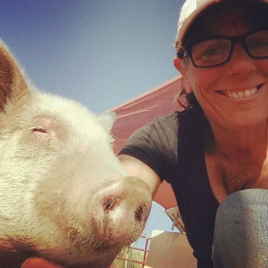 Cherry Blossom, Sale Ranch Sanctuary, animal welfare, animal cruelty, The Dodo, abuse, transformation, piglet