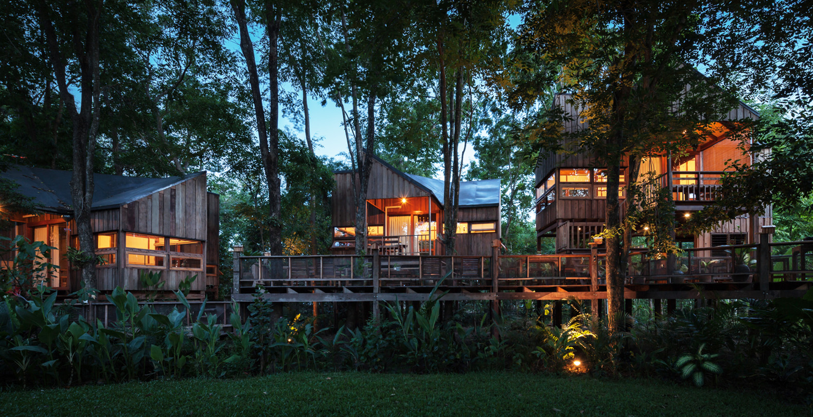 delightful treehouse residence weaves through a forest in thailand