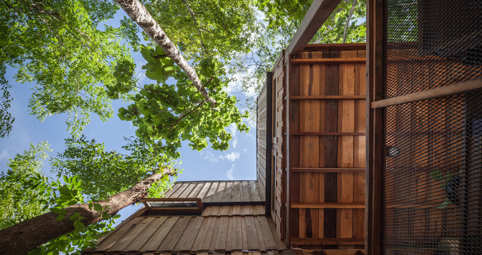 Tree House Studio Wood Brilliant Delightful Treehouse Residence Weaves  Through A Forest In Thailand . Decorating
