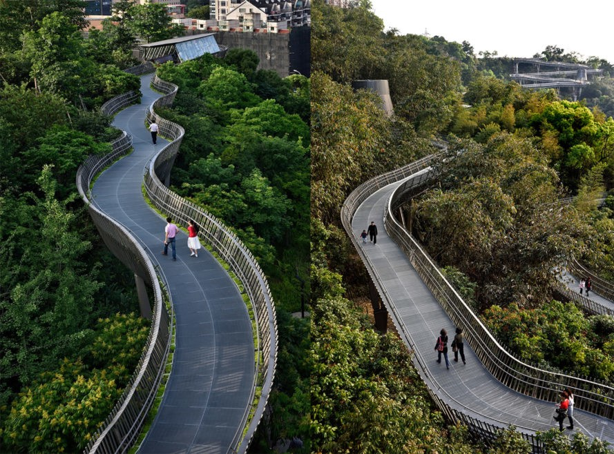 Jinniushan, Jinniushan walkway, Jinniushan architecture, Fuzhou Forest Walkway, Fuzhou Forest Walkway by LOOK Architects, Fudao walkway in Fujian, Fujian elevated walkway, elevated forest walkway in China, treetop canopy walkway, LOOK Architects China design
