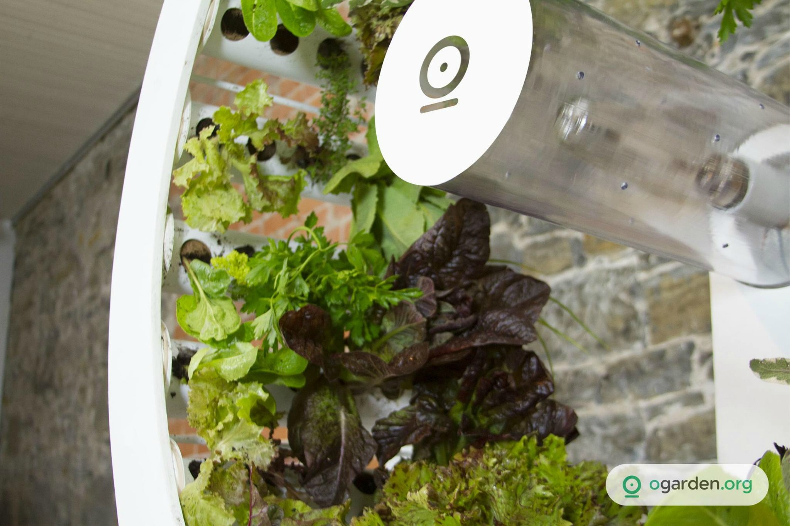ogarden indoor farm indoor gardens home gardens indoor farms home growing