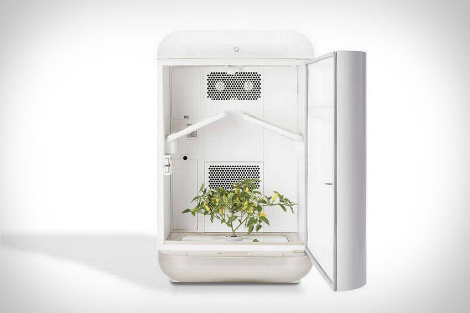 Seedo Is A Chic Minimalist Hydroponic Garden That Makes