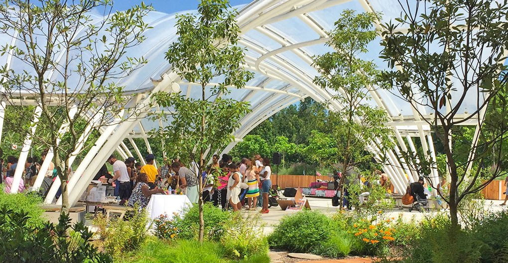 The brooklyn children s museum s new green roof lets kids for 107 terrace place brooklyn