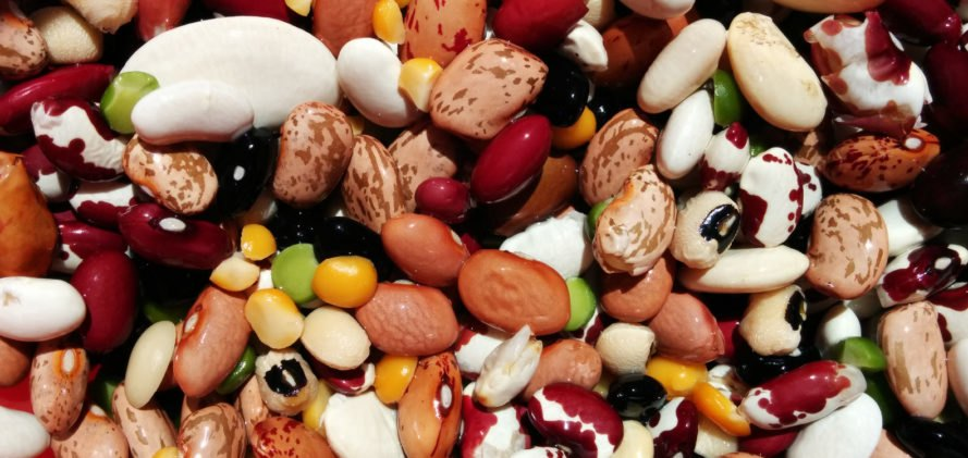 beans, dry beans, dried beans, vegan protein