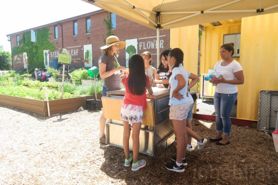 GrowNYC Teaching Garden, GrowNYC garden, GrowNYC urban farm, Governors Island Teaching Garden, Teaching Garden New York City, NYC urban farming, NYC community garden, Governors Island urban farm, Governors Island community garden, field trip urban farm niece, Earth Matter compost, organic garden NYC, aquaponics NYC, solar powered aquaponics