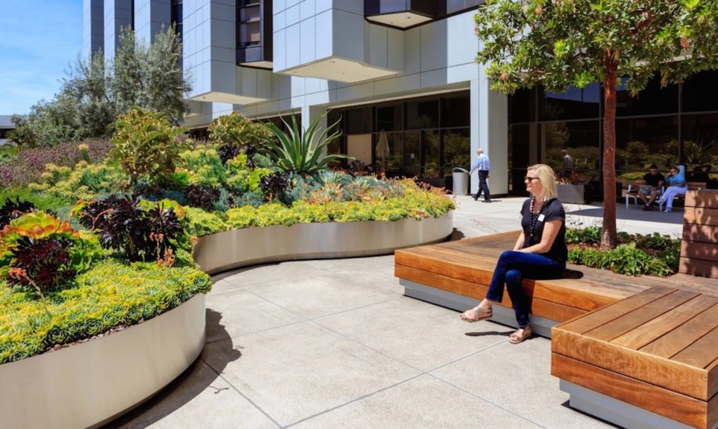 Restorative healing gardens take over a concrete garage for Ahbe landscape architects