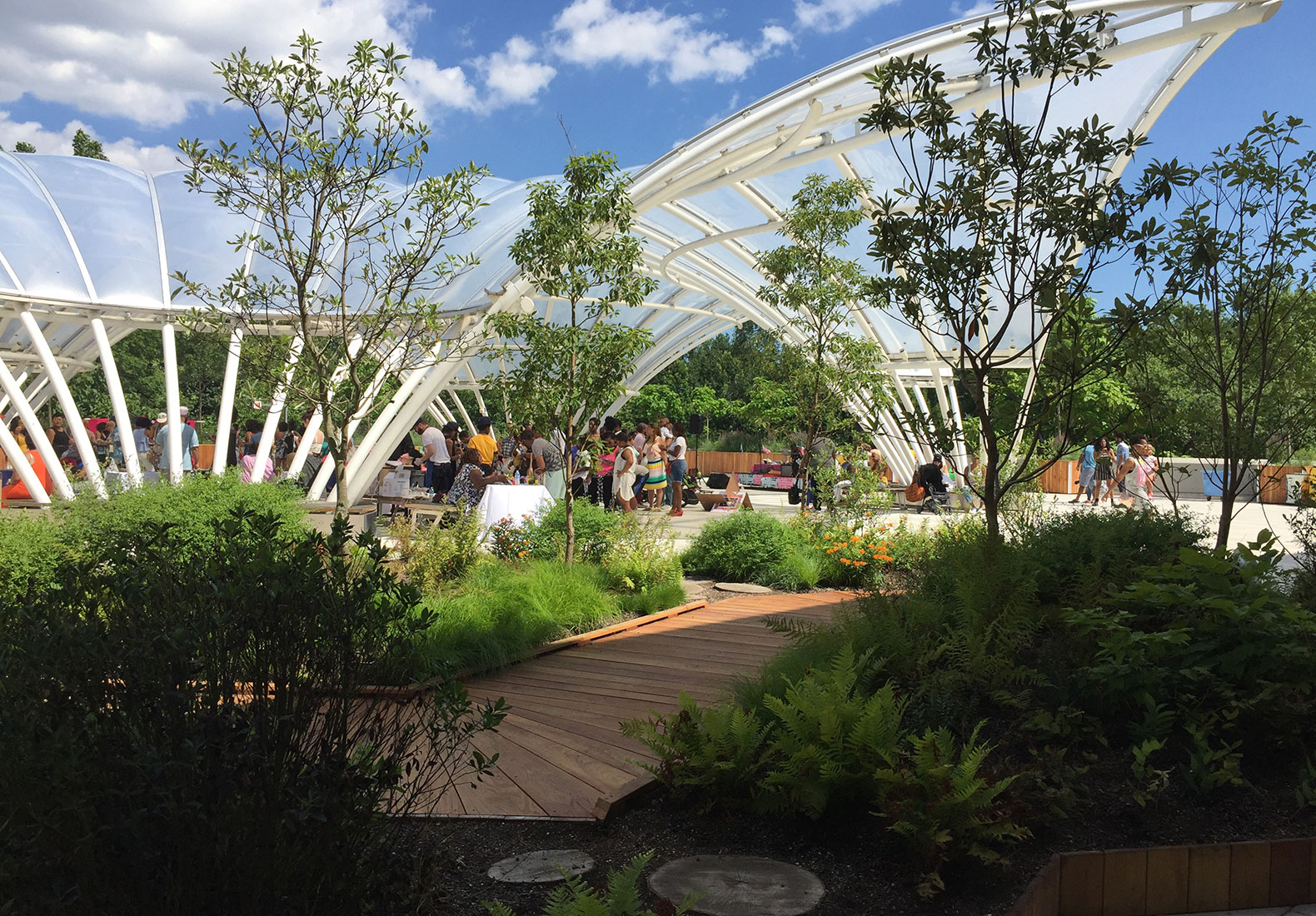 The Brooklyn Childrens Museums New Green Roof Lets Kids Explore Wilderness In Middle Of City