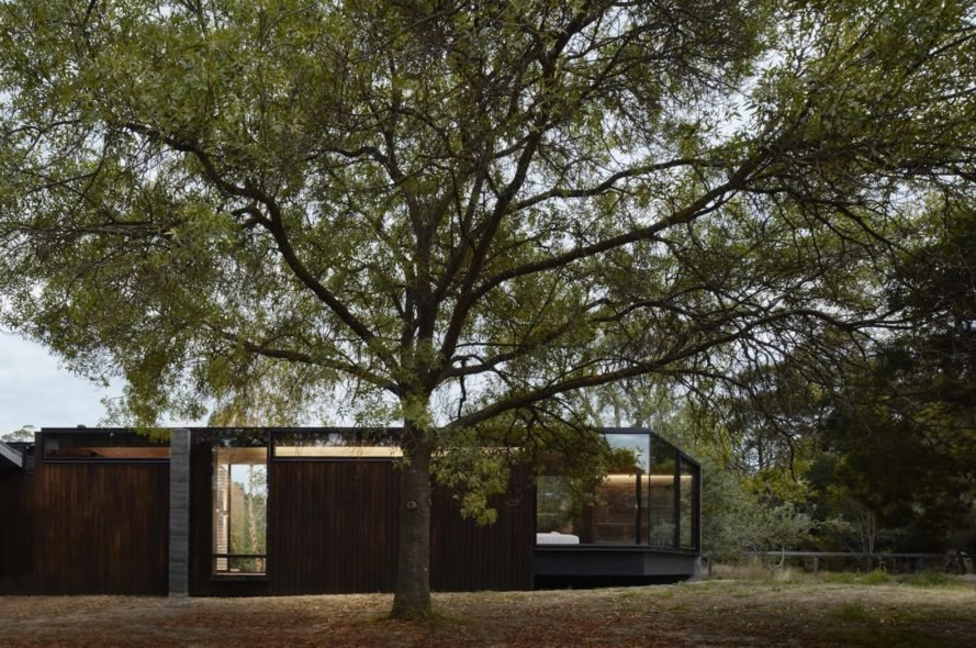 Pavilion Between Trees by Branch Studio Architects, Pavilion Between Trees in Victoria, rammed charcoal house, rammed charcoal architecture, earthy material palette architecture, Pavilion Between Trees in Australia,