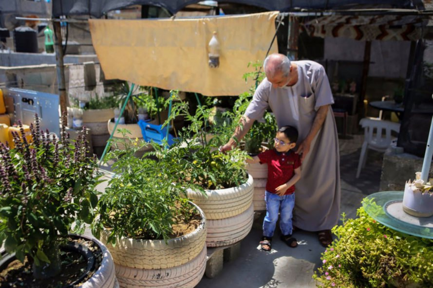 Gaza, Palestine, urban farming, rooftop farming, urban gardening, United Nations, resilience, community organizing, community gardens, DIY, aquaponics, agriculture, Middle East, recycling, recycled materials, Palestinians