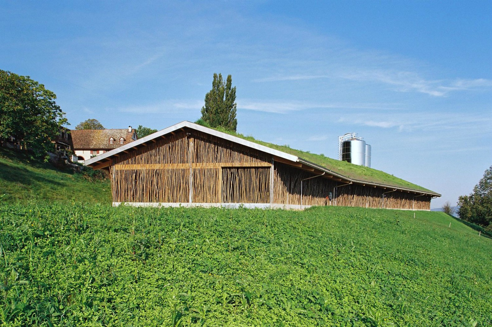 Bamboo interior design natural building blog - Beautiful Cow Barn In Basel Is Made Of Tree Branches Topped With A Grassy Roof