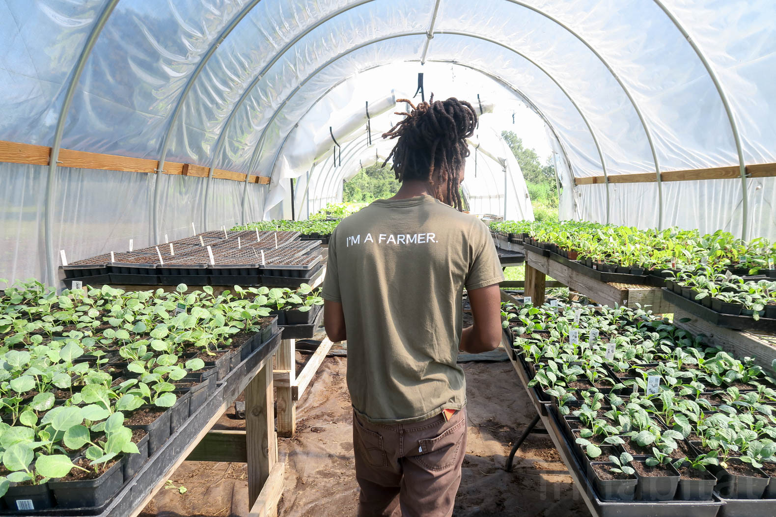 New Orleans golf course transformed into city's biggest urban farm with an Eco-Campus