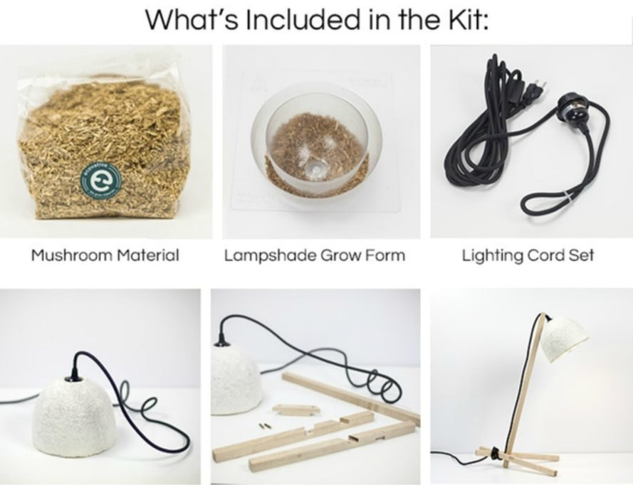 Grow-It-Yourself Lamp Kickstarter, Ecovative Design, MushLume Lighting Collection, Danielle Trofe, mushroom mycelium, lamp design, mushroom lamps, diy lamps, natural lamps, eco lamps, eco interior design, sustainable lamps, Grow Lamp kit, eco-friendly goods, diy gardening, shroom lamps, mycelium technology, earth-compatible products