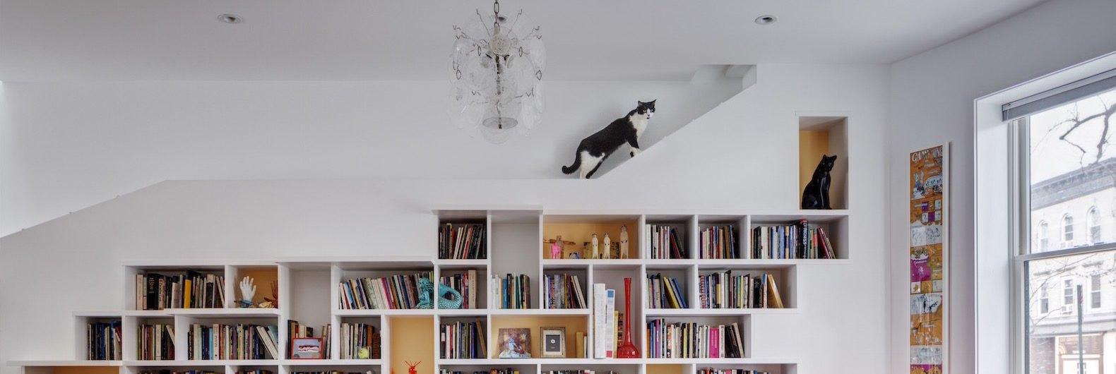 Light-filled home for book lovers and their cute cats is built of ...
