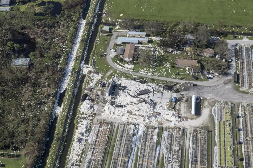Hurricane Irma, Irma, Florida, trash, garbage, debris, destruction, waste-to-energy, waste-to-energy plants, burning trash, burning garbage, burning waste, waste disposal, energy, electricity, hurricane, hurricanes, natural disaster