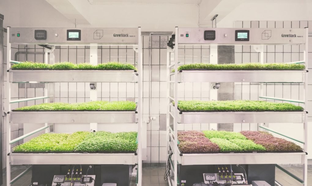 Taste The Future With Ikea S Space10 Lokal Hydroponic Food