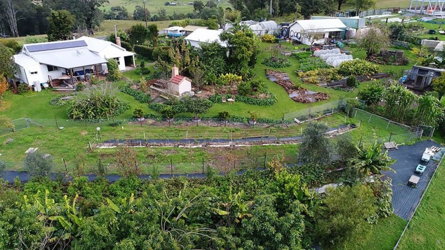 Limestone Permaculture Farm, Brett Cooper, Nici Cooper, Australia, New South Wales, permaculture, permaculture farm, permaculture farming, farm, farms, farming, sustainable food, sustainable farming, sustainable farm, sustainable farms, agriculture
