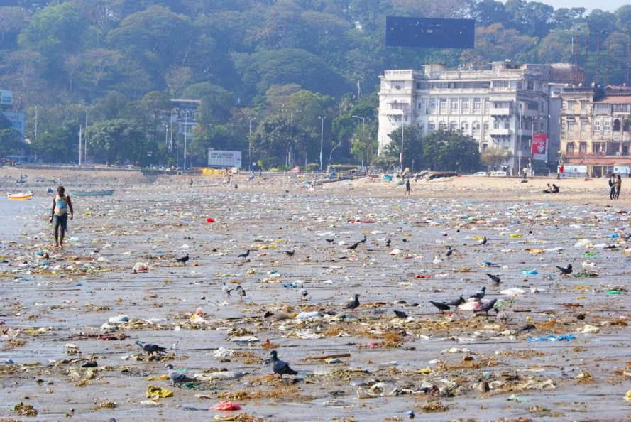 Plastic Pollution X on biology water pollution