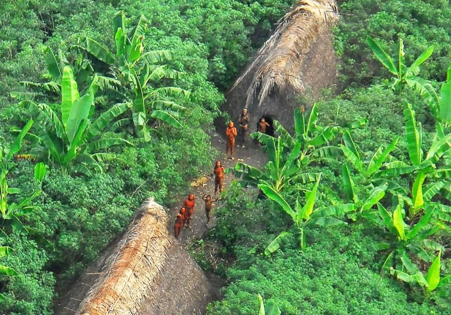 Uncontacted, uncontacted tribe, uncontacted tribes, uncontacted Amazon tribe, uncontacted Amazon tribes, Funai, Amazon, Brazil, isolated, isolated tribe, isolated tribes, indigenous, indigenous people, indigenous peoples